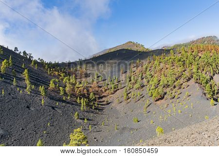 "Shot of the famous hiking path ""Ruta de los vulcanos"" taken in the south of la Palma nearby Los Canarios."