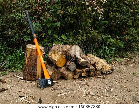 Wood for camp fire with axe in front of green bushes at campsite