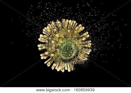 Destruction of Human Immunodeficiency Virus HIV , AIDs virus isolated on black background, 3D illustration. Concept for HIV treatment and prevention