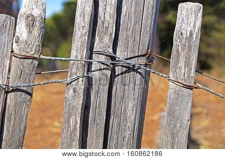 wooden fence tied with iron . chain tied to the pole