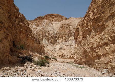 Desert canyon Nachal Ogg near the Dead Sea in Israel
