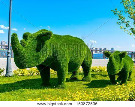 Kazan, Russia. Rhinos. Topiary figure in the Kremlin embankment of the river Kazanka. Landscape design. Green Art.