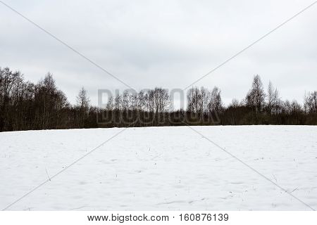 Countryside Fields In Winter
