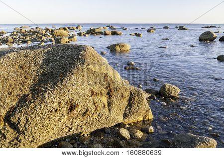 Falling tide reveals rocky Buzzards Bay shoreline