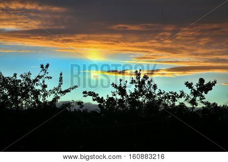 sky in sunset cloud colorful beautiful with silhouette trees in evening