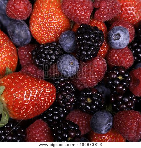 Mixed ripe sweet berries background. Blueberries raspberries strawberries and blackberries. With space for text.