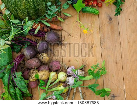 Harvest of fresh vegetables on wooden background. Top view. Potatoes, carrot, squash, peas, tomatoes, greens, beets, zucchini, tomatoes, peppers, onion, garlic, cucumber, dill.