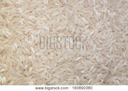white long rice background, backdrop or texture