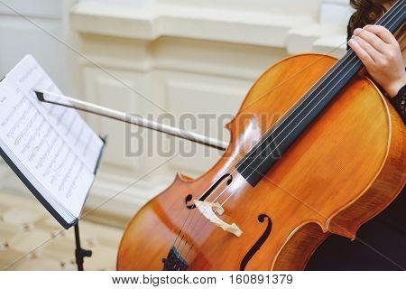 Classical music professional cello player solo performance unrecognizable person
