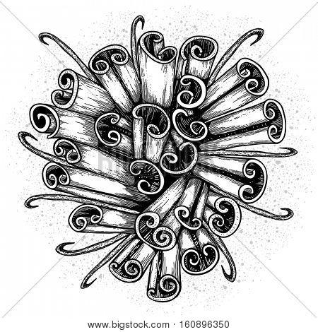 Cinnamon sticks. Christmas spice. Hand drawn Holiday background. Vector illustration.