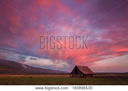 A pastorale scenery in Northern California during sunset.