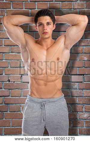 Bodybuilder Bodybuilding Flexing Muscles Brick Wall Body Builder Building Strong Muscular Young Man