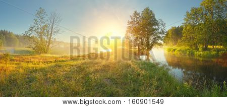 Panoramic landscape of summer morning. Sun shine on green meadow in the morning. Colorful summer sunrise over meadow.