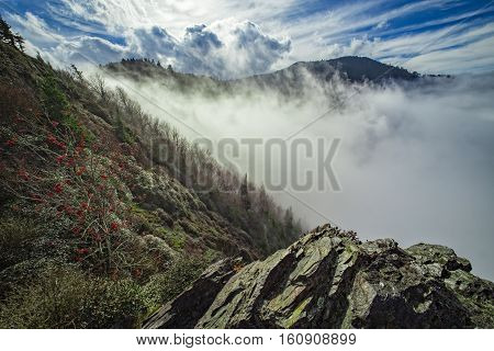 A view of Great Smoky Mountains National Park from the Appalachian Trail