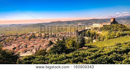 view of Soave (Italy) surrounded by vineyards that produce one of the most appreciated Italian white wines and its famous medieval castle.
