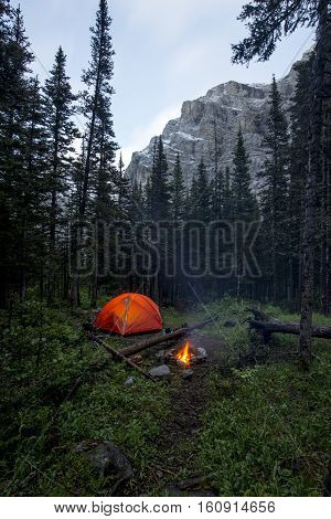 Tent and campfire wild camping in a forest near mountains