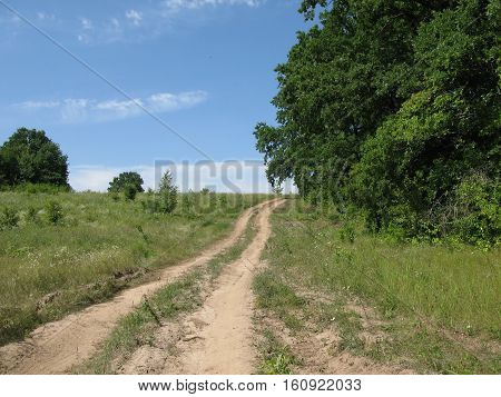 Canicular sunny day, road on a glade on a declivous slope and trees