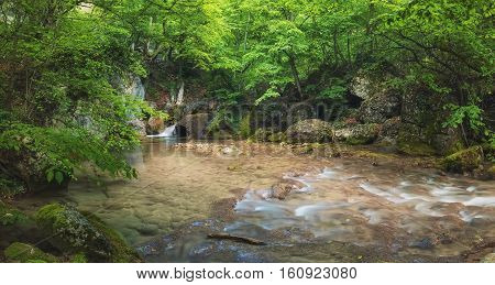 River in summer canyon. Beautiful natura summerl landscape