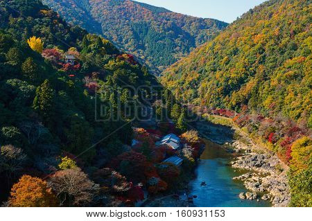 Fall colored forests along the Katsura River in the Arashiyama part of Kyoto, Japan during autumn