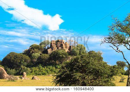Stones and grass and sky. Serengeti. Tanzania, Africa