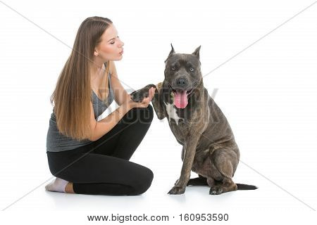 Beautiful sporty young woman sitting on floor with adult grey amstafford terrier. Dog giving paw shake to girl. Studio shot over gray background. Copy space.
