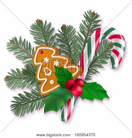 Candy cane, holly, fir and gingerbread Christmas cookie on white background. Vector isolated holiday elements for your design.