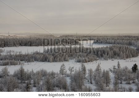 Winter landskape with forest in snow in the evening sunset. North