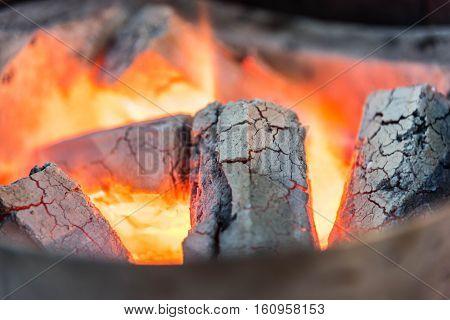 Log On Fire Burning Billets In Fireplace.