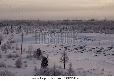 Winter landscape with forest in snow in the night. North