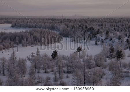 Winter landskape with forest in snow in the night. North