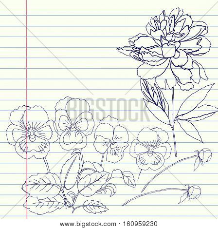 Notebook set with peony and pansy. Vector illustration