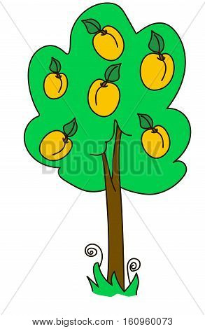 apricot, tree, wood, green, yellow, nature, fruit, garden, fruiter