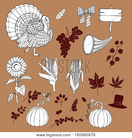 Thanksgiving day. Set of  hand drawn elements. Can be used for backgrounds and cards for Thanksgiving   decorations. Pumpkin, turkey, harvest, autumn. Vector Illustration