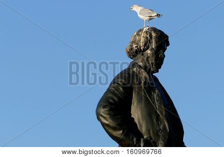 Ottawa, Canada. November 14Th 2016 - Seagull On Head Of Thomas D'arcy Mcgee Statue Thomas D'arcy Mcg