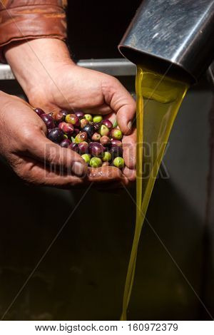 Hands With Olives And Oil Pouring