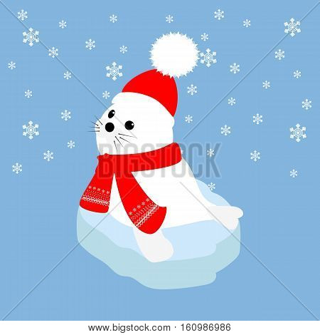 Seal baby in hat and scarf on an ice floe. Vector illustration