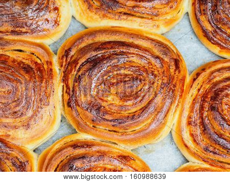 Closeup Of Fresh Baked Cinnamon Buns After Baking In Oven, With Egg Yolk, On Baking Paper