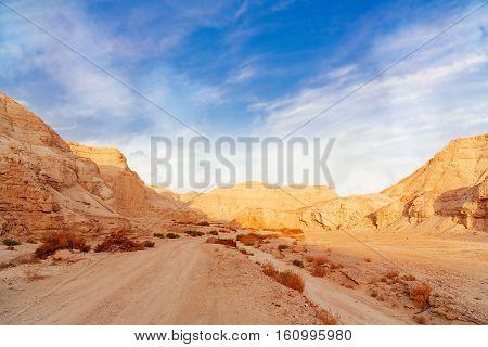 the landscape of Negev desert in Israel
