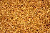 Shredded oak bark like texture or background poster