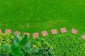 Pathways with green lawns, Landscaping in the garden,Top view of curve walkway on green grass field and flower garden poster