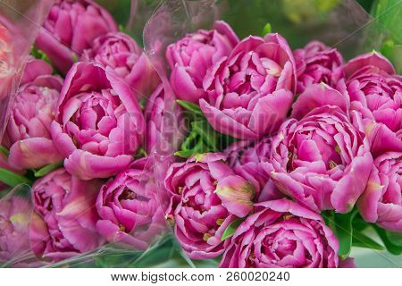 Pink Peonies Bouquets. Floristics, Flowers, Gifts Theme.