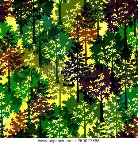 Seamless Background With Silhouette Forest Trees, Pine And Maple, Colorful Patterned Forest. Eps10,