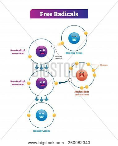 Free Radicals, Antioxidant And Healthy Atom Explanation Vector Illustration Diagram. Unstable And Hi