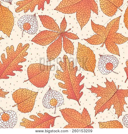 Vector Autumn Seamless Pattern With Oak, Poplar, Beech, Maple, Aspen And Horse Chestnut Leaves And P