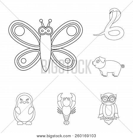 An Unrealistic Animal Outline Icons In Set Collection For Design. Toy Animals Vector Symbol Stock We