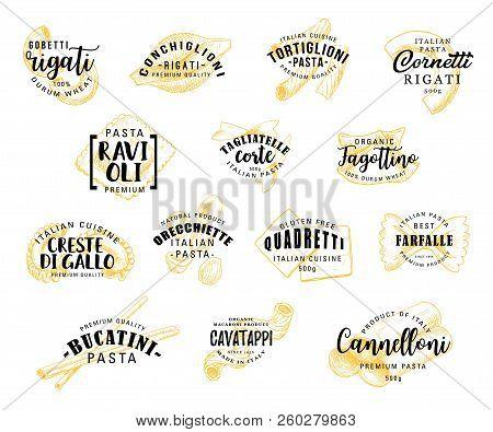 Italian Pasta Food Icons. Rigati And Conchiglioni, Tortiglioni And Cornetti, Raviolli And Tagliatell