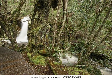 Crater Falls In Cradle Mountain