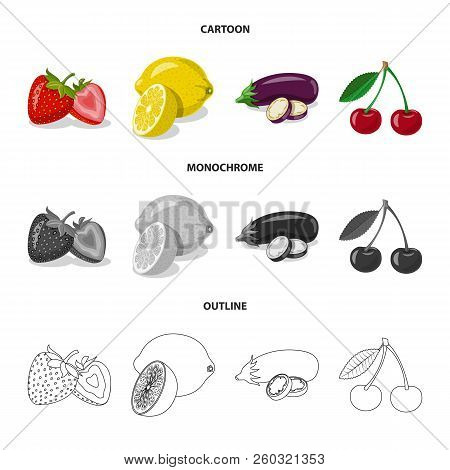 Vector Illustration Of Vegetable And Fruit Icon. Set Of Vegetable And Vegetarian Stock Symbol For We