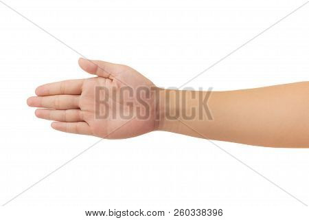 Human Hand Isolate On White Background.
