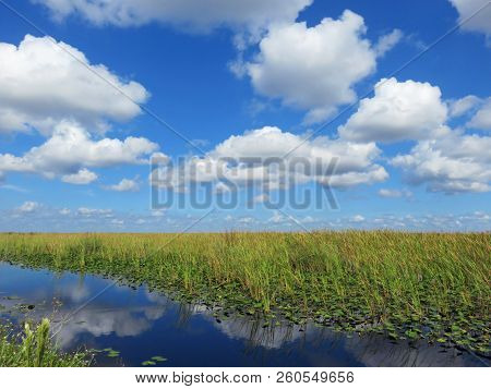 Scenic Natural Landscape Of Southwest Florida Canal